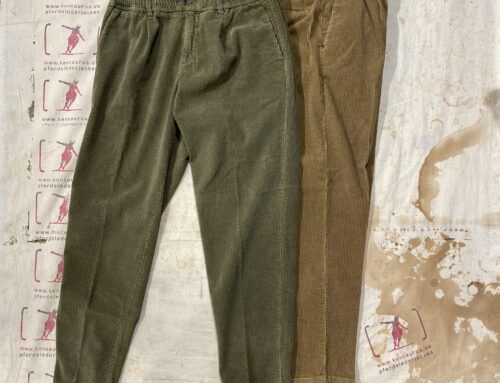 White Sand cord pant tan and olive herringbone