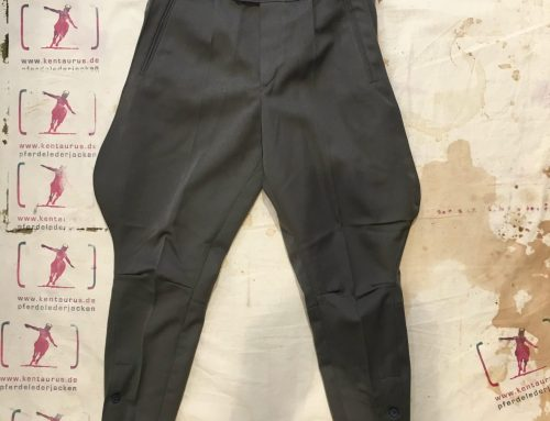 Magnafied breeches grey