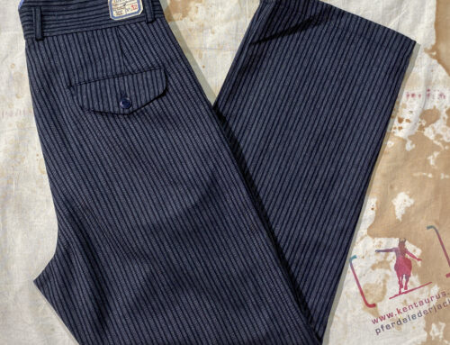 Scartilab striped wool pant 130SE418