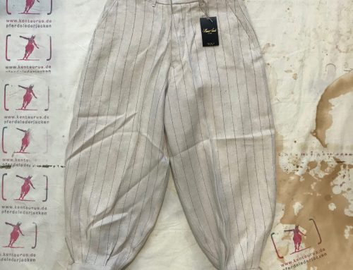 Haversack striped linen pant